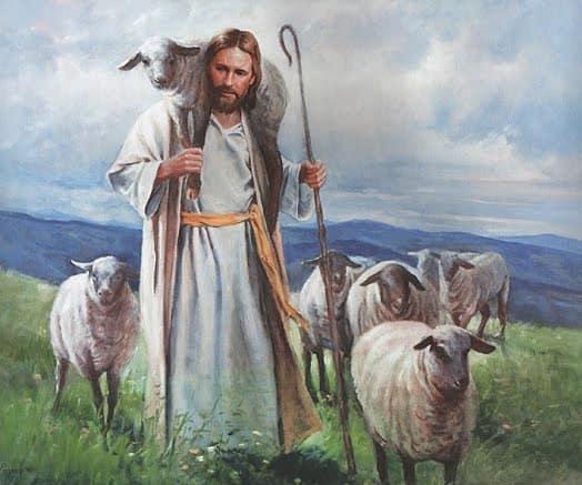 De getuigenis van ons geloof