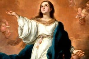 maria-koningin-van-de-hemel-ten-hemelopneming-onze-lieve-vrouw-ter-nood