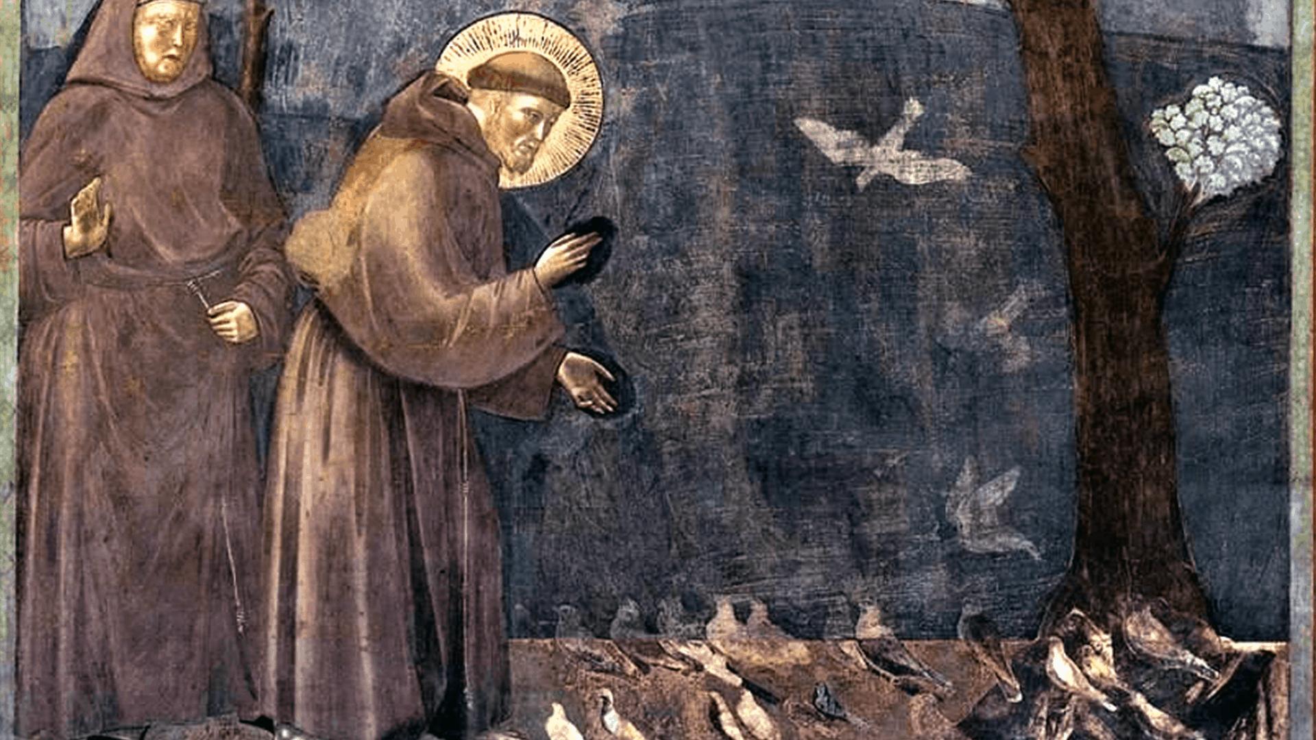 franciscus-assisi-prediking-vogels-olv-ter-nood-heiloo